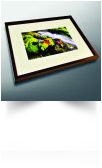 Click here to learn more about Framed Art